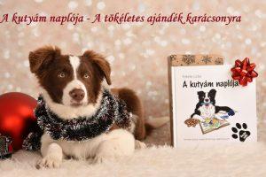 A kutyám naplója17